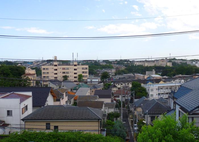 バナナ園 生田ヒルズ施設写真05
